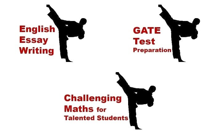 AAME tutoring programs